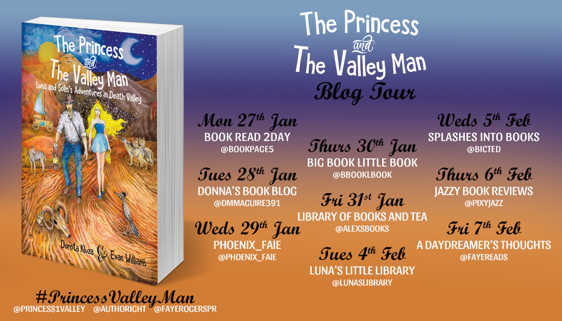 the princess and the valley man banner1